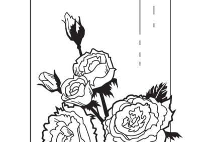 ręcznie-rysowane-ilustracje-i-grafiki